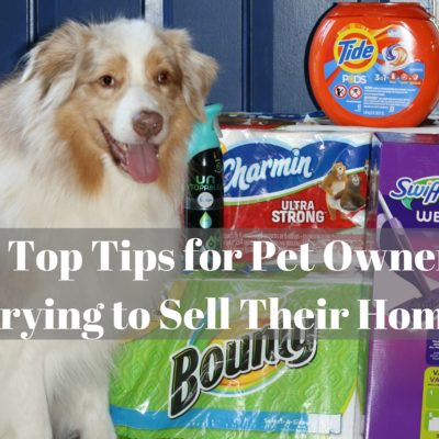 9 Top Tips for Pet Owners Trying to Sell Their Home #CleanHomeSavings