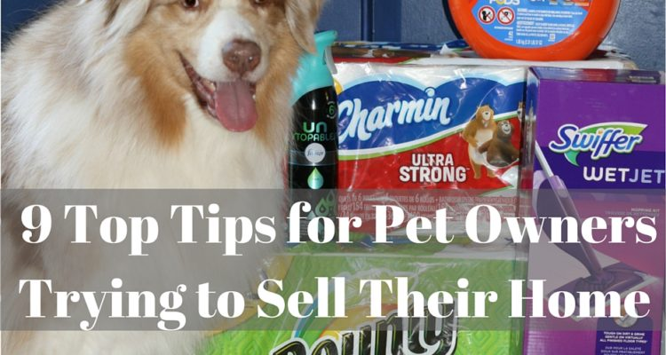 9 Top Tips for Pet Owners Trying to Sell Their Home